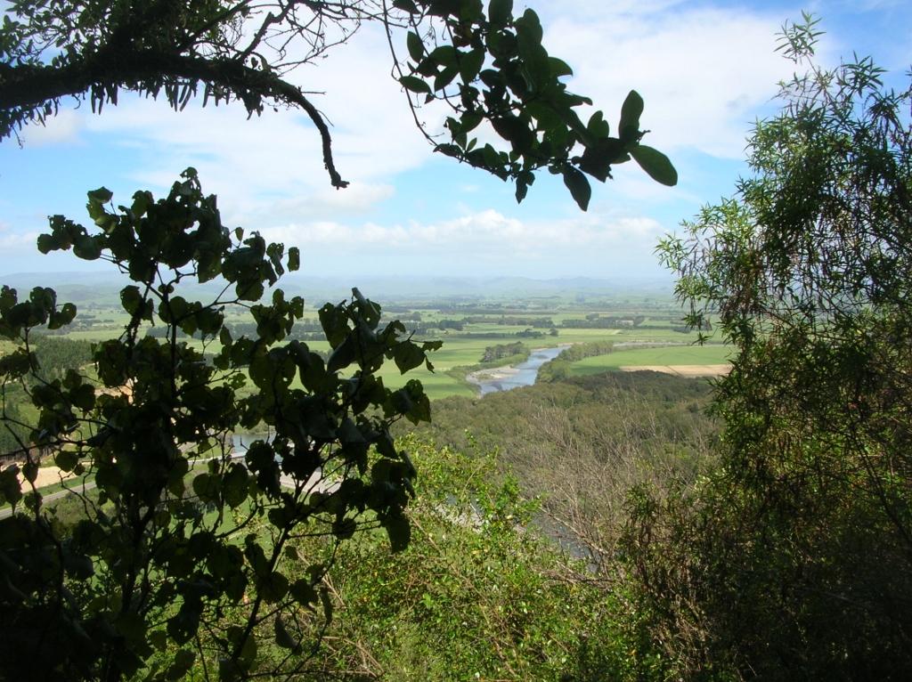 Blick vom Gorge-Track auf Manawatu.