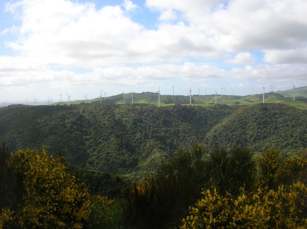 Der Manawatu-Windpark.