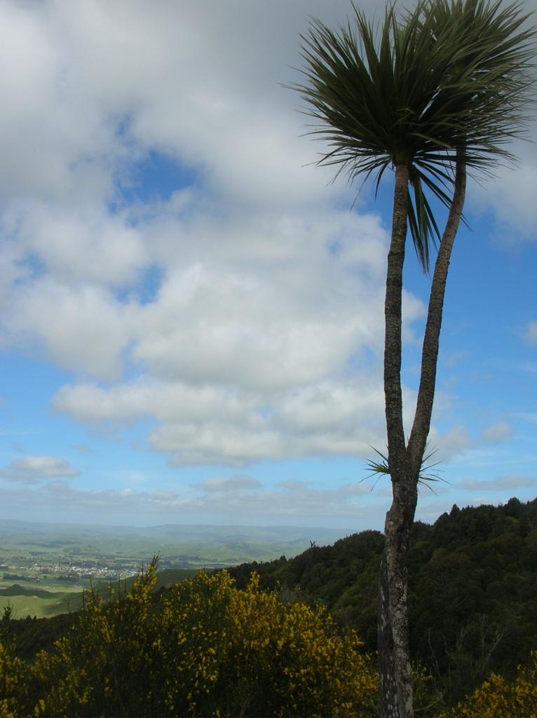 Neuseeland.